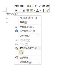 Word2010 校正機能を活用する