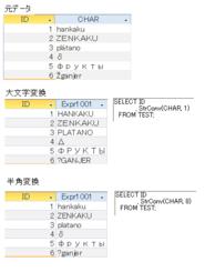 多言語仕様ではstrConvの扱いに注意